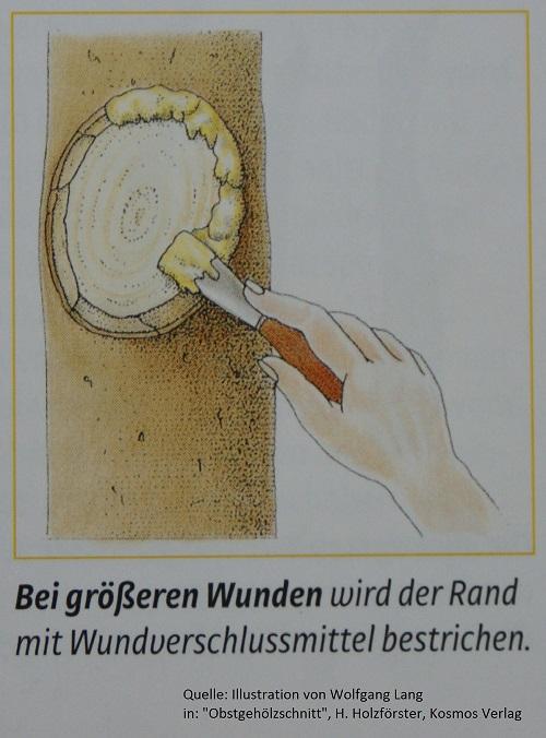 Wundrand