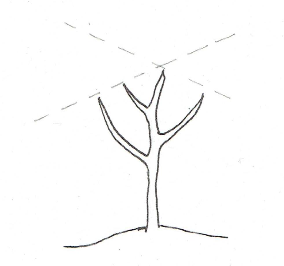 Zeichnung_Saftwaage